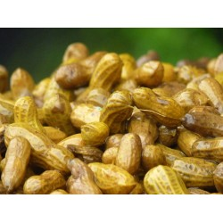 Chalimbana DRIED Nuts 500g